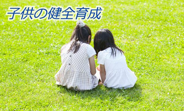 子供の健全育成(カテゴリー)