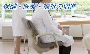 保健・医療・福祉の増進(カテゴリー)